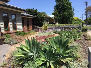 Low maintenance front garden, drought tolerant plants, gravel paths, Cortn steel edging