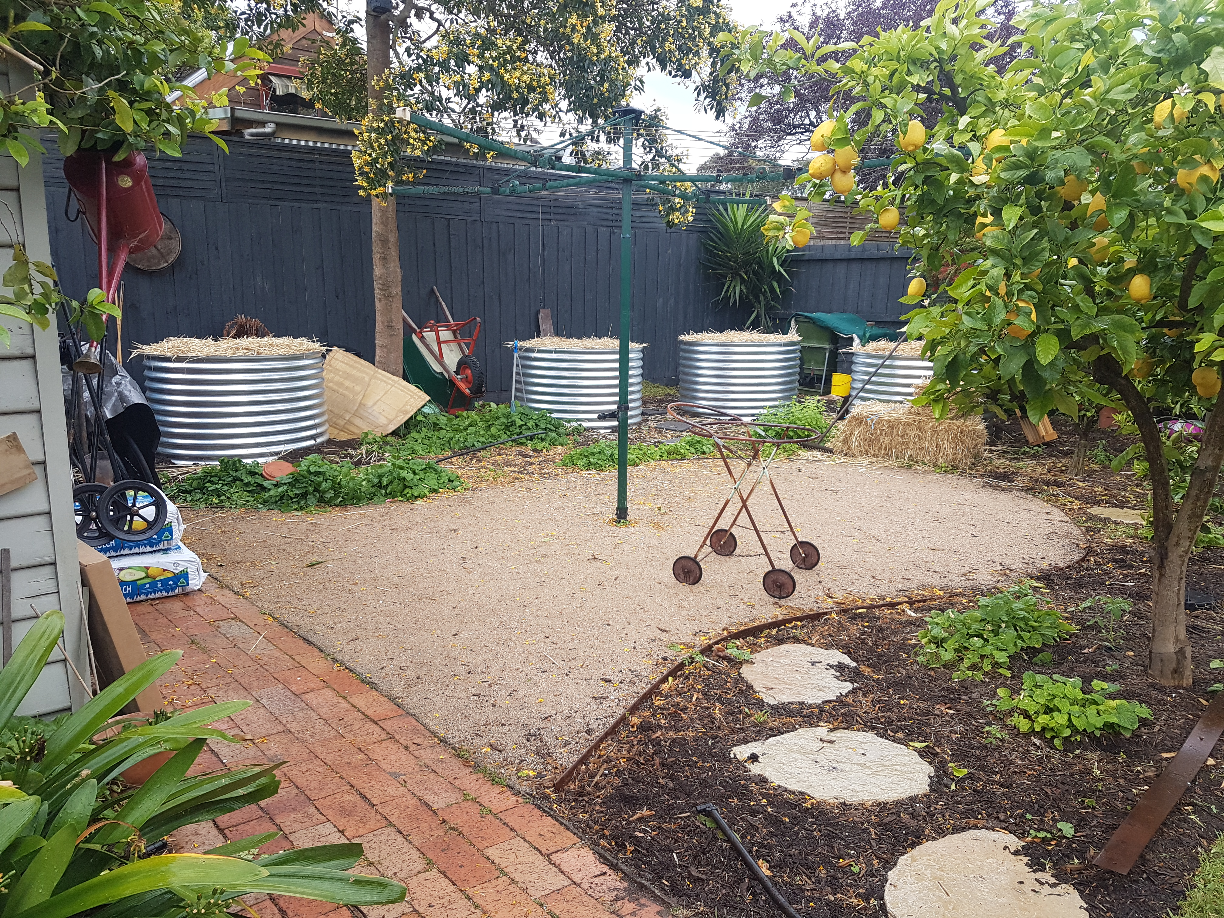 vegie beds, compacted granitic sand, no lawn