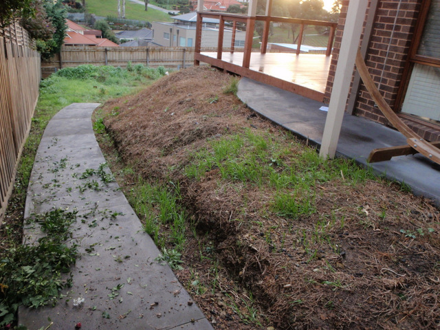 Before landscaping, concrete path