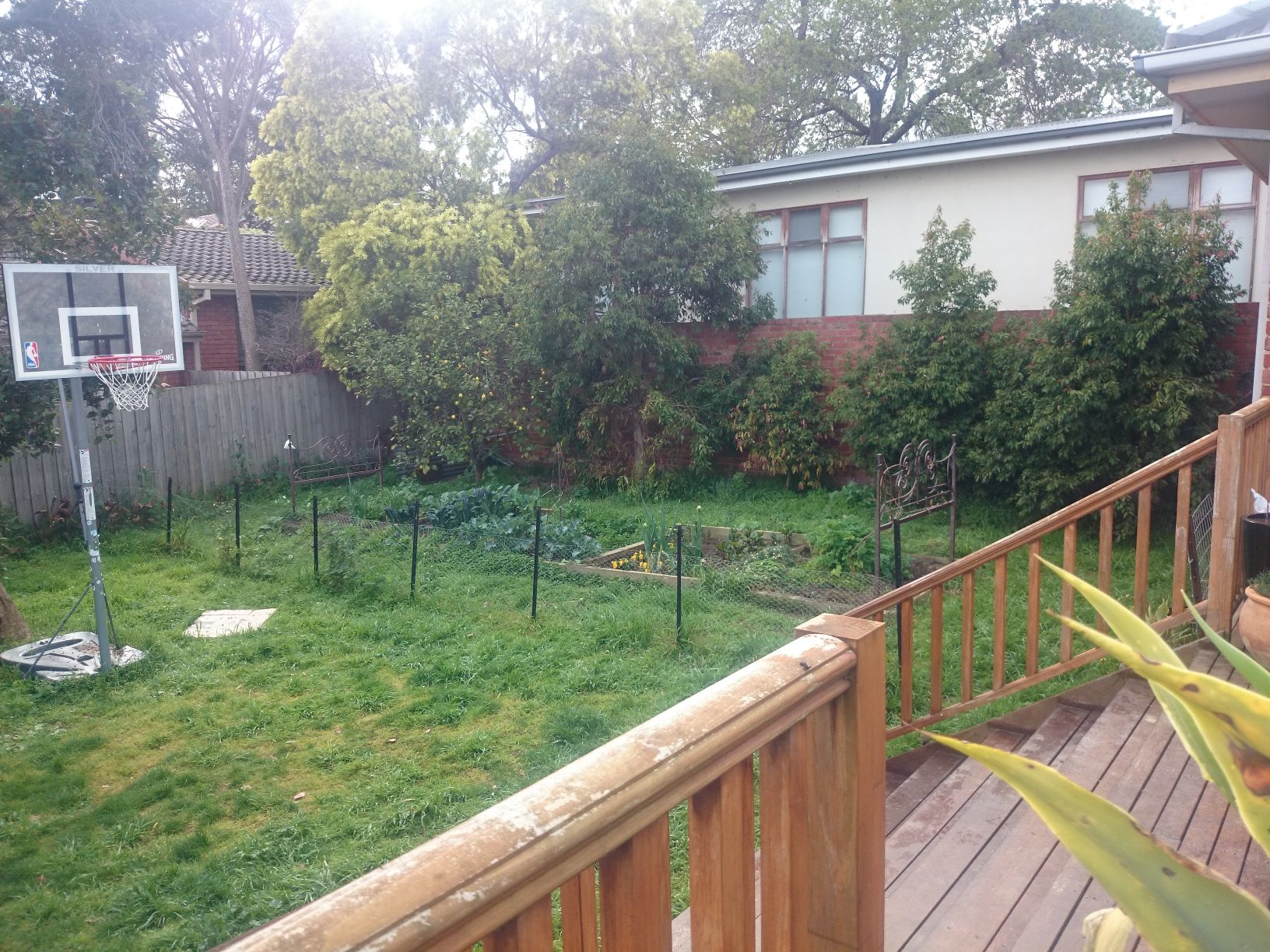 A garden with lots of potential, mow your lawn,