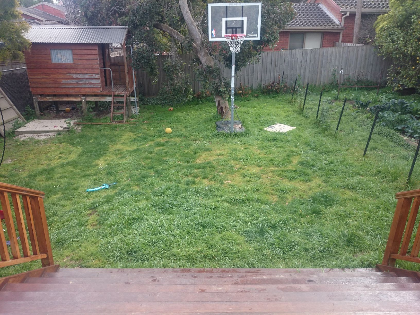 A garden with lots of potential, lawn needs a mow, basket ball hop, cubby house