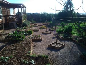 Large Veggie garden, Useable space, good soil