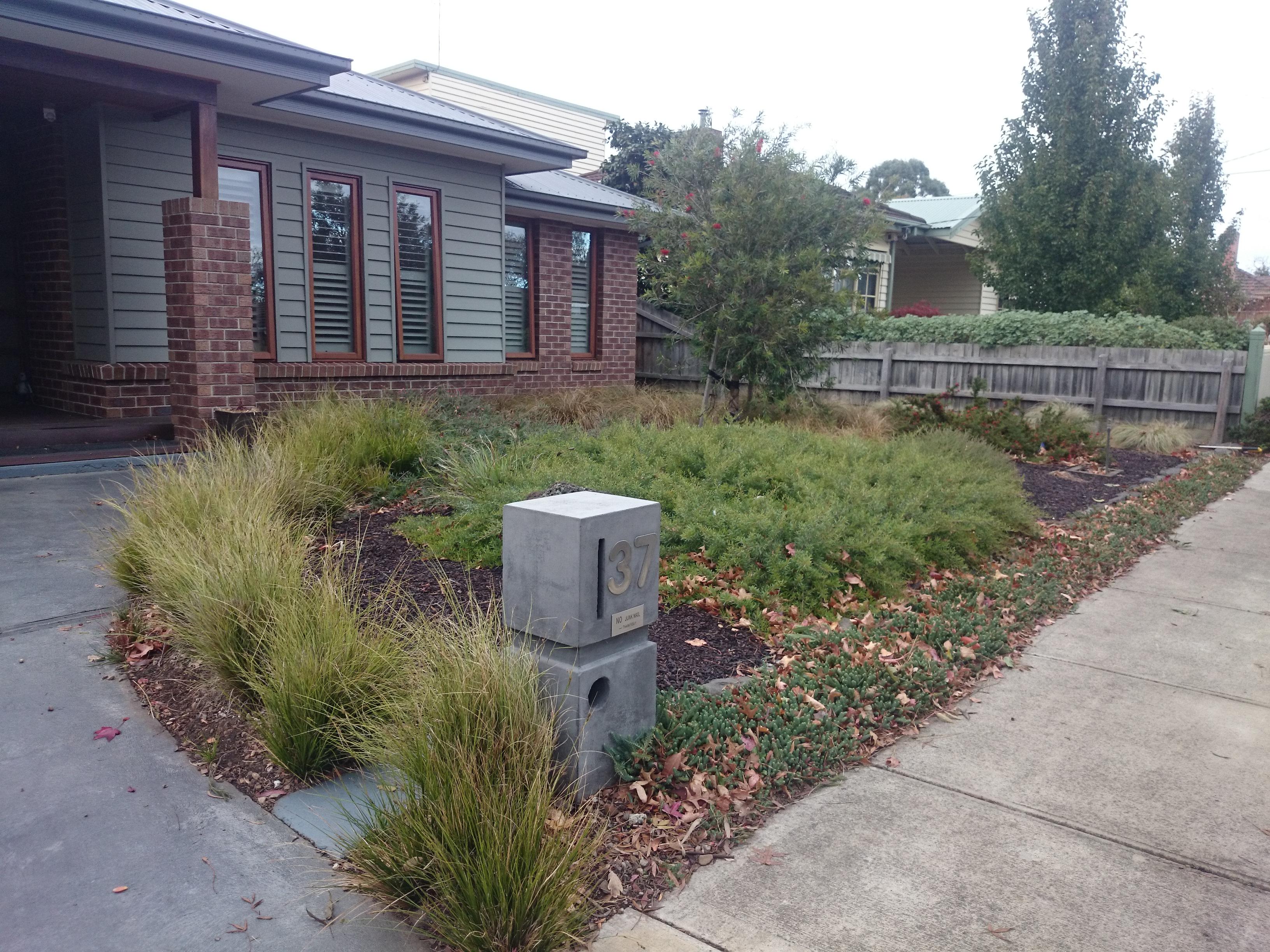 Agavas, corten steel, low maintenance garden, before compacted pathways, Blackburn garden before landscaping