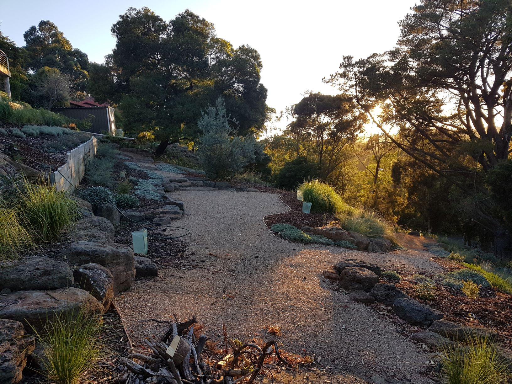 Colac rock for retaining, compacted crushed sandstone, native garden, Lower Plenty garden, sloping garden, native plants