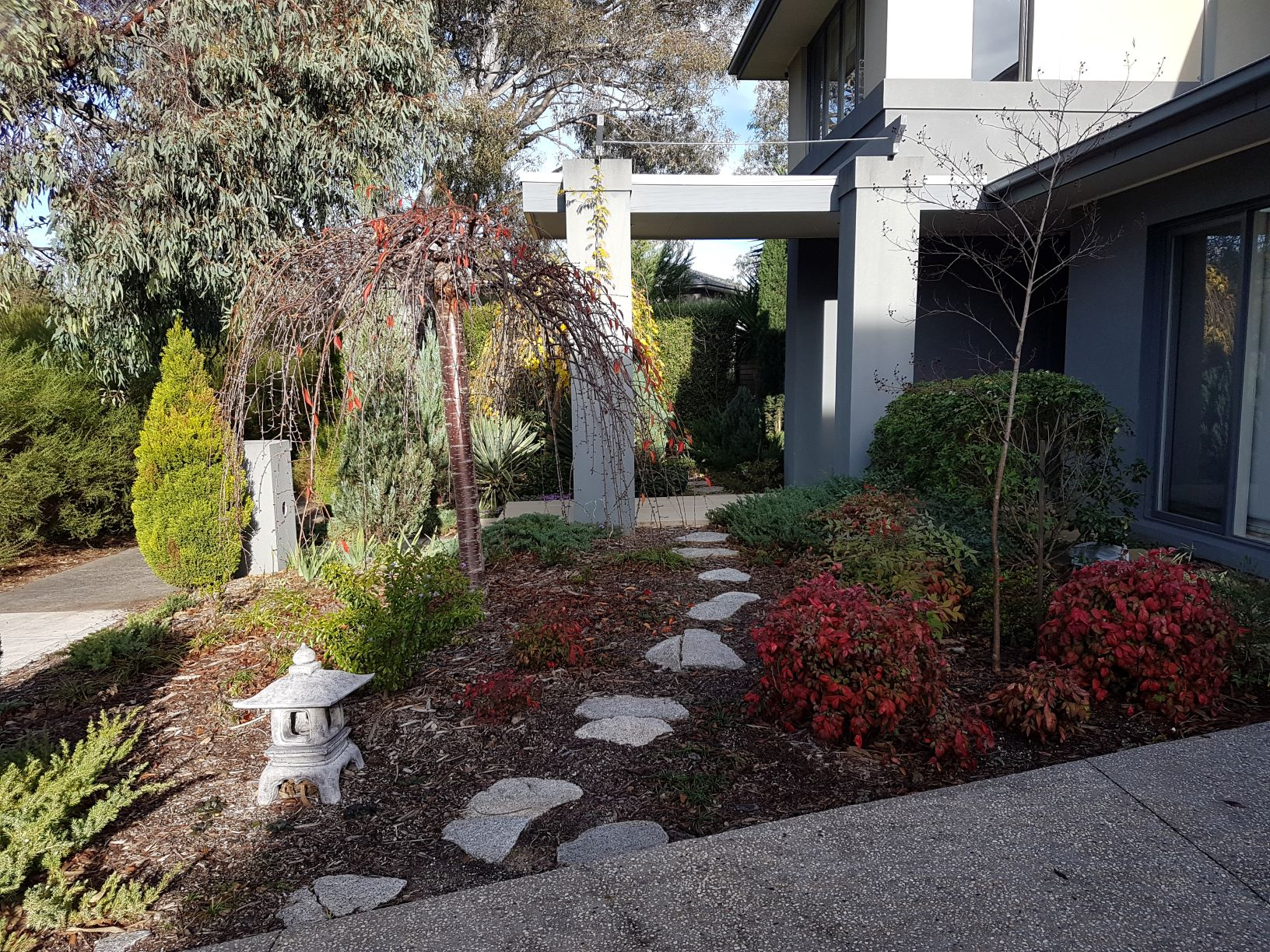 Granitic stone, Granitic stone stepping pavers, Asian style garden, Macleod garden,