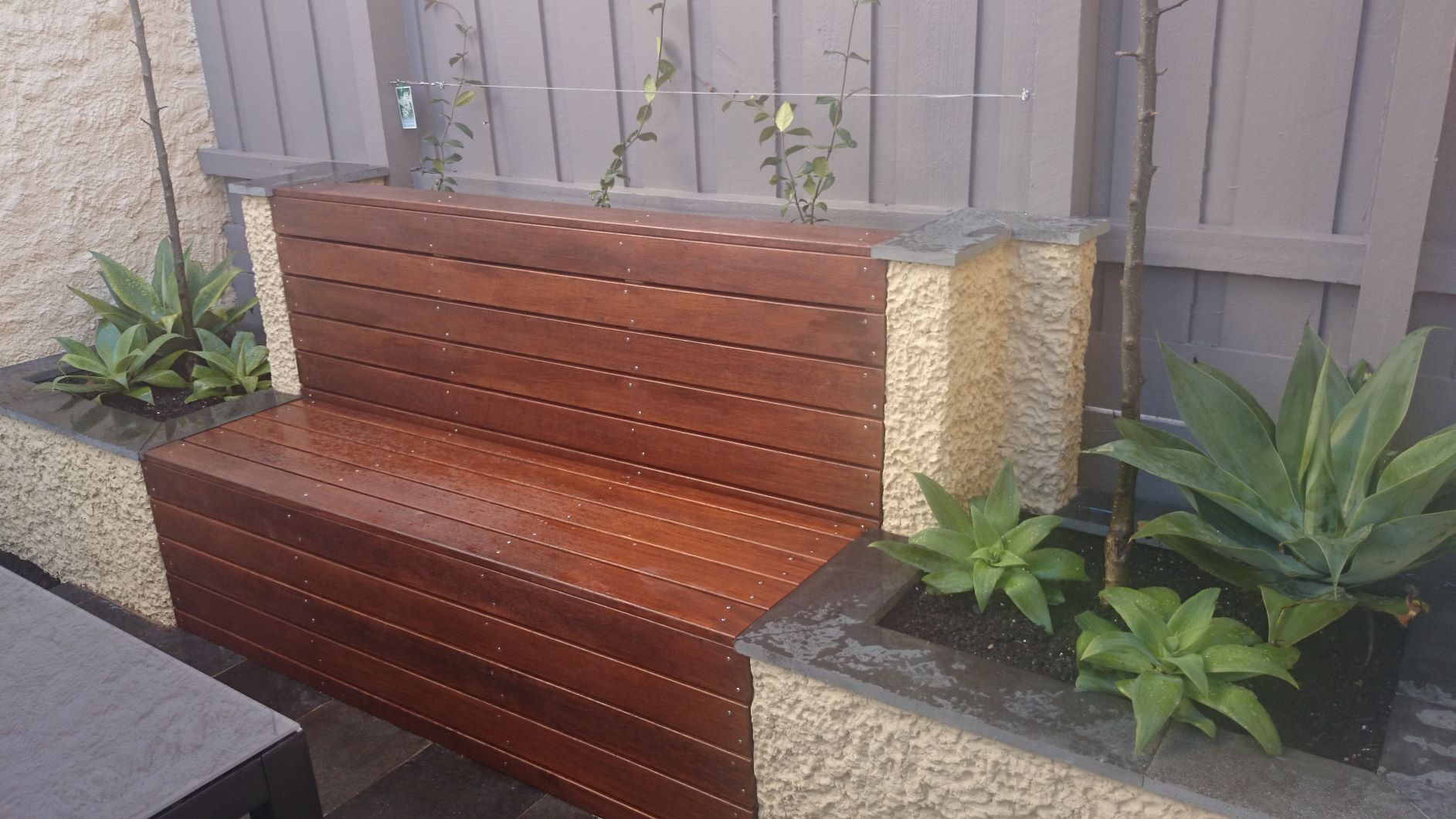 Built in timber seat, Brick rendered planter boxes, climbers on wire, Agaves, South Melbourne courtyard garden.